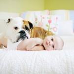 Os cães são ótima companhia para as crianças e auxiliam no desenvolvimento dos pequenos. (Foto: divulgação)