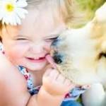 Há várias raças de cachorros, na qual você poderá encontrar o companheiro certo para o seu filho. (Foto: divulgação)