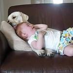 O convivio diário do bebê com o cachorro faz com que se tornem grandes amigos. (Foto: divulgação)