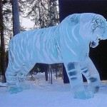 Tigre esculpido em gelo no tamanho original. (Foto: divulgação)