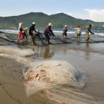 Pescadores puxando sua rede na praia de My Khe (Foto: divulgação)