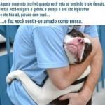 Um abraço amigo (Foto: divulgação)