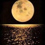 Lua cheia refletinda na água (Foto: divulgação)