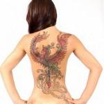 Tattoo fênix. (Foto: Divulgação)