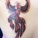 Tatuagem de fênix - A fênix ou fénix é um pássaro da mitologia grega que, quando morria, entrava em auto-combustão (Foto: divulgação)