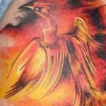 Tatuagem de fênix colorida (Foto: divulgação)