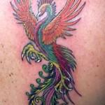 Tatuagem de fênix - Outros relatos afirmavam que esta ave vivia nove vezes o tempo de existência do corvo, que tem uma longa vida. (Foto: divulgação)