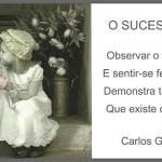 O sucesso alheio (Foto: divulgação)