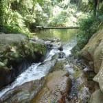 Parque Estadual da Pedra Branca - RJ (Foto: divulgação)
