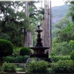 Jardim Botânico do Rio de Janeiro (Foto: divulgação)