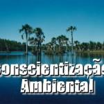 Conscientização ambiental - Todos precisam ter (Foto: divulgação)