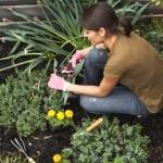 Cuidar do jardim é uma atividade extremamente relaxante