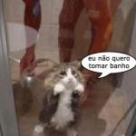 Medo de banho (Foto: divulgação)