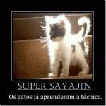 Super Sayajin (Foto: divulgação)