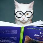 Gato intelectual (Foto: divulgação)
