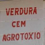 Vendedor de verduras (Foto: divulgação)