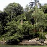 Angra dos Reis - Um paraiso a céu aberto (Foto: divulgação)