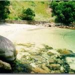 Praia da Baleia - Angra dos Reis (Foto: divulgação)