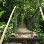 Ecoturismo e Esportes de Aventura - Angra dos Reis (Foto: divulgação)