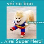 Cão Super-herói (Foto: divulgação)