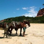 Cavalgada em Trancoso (Foto: divulgação)