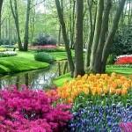 Jardim com lago e flores coloridas (Foto: divulgação)