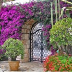 Entrada do jardim com flores suspensas (Foto: divulgação)