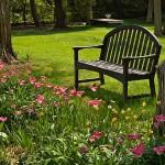 Jardim gramado com banco de madeira (Foto: divulgação)