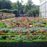 O jardim florido é uma janela para a alma (Foto: divulgação)