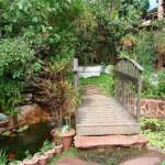 Ponte sobre o lago une dois jardins (Foto: divulgação)