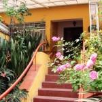 Jardim florido ao redor da escada (Foto: divulgação)