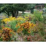 Jardim florido em Quinta da Fontoura (Foto: divulgação)