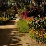 Jardim florido - World Map Portugal Santarem Abrantes (Foto: divulgação)