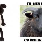 Carneiro baitola (Foto: divulgação)