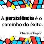 A persistência é o caminho do êxito (Foto: divulgação)