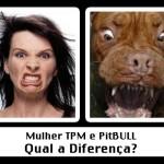 Qual a diferença? (Foto: divulgação)
