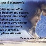 Amor e Harmonia...(Foto: divulgação)