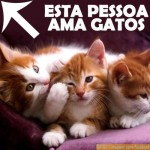 Para os fãs dos felinos. (Foto: Divulgação)