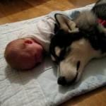 Eles adoram as crianças. (Foto: Divulgação)