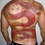 Dragão bem desenhado e tampando as costas (Foto: Divulgação)