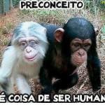 O ser humano tem preconceito, mas os animais não.  (Foto:Divulgação)