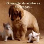 Aceitar as diferenças muda as relações.  (Foto:Divulgação)
