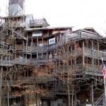 A maior casa da árvore tem cerca de 30m de altura (Foto: Divulgação)
