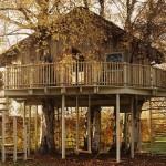 As casas da árvore são uma ótima opção para a diversão tanto de crianças quanto de adultos (Foto: Divulgação)