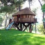 A casa da árvore também pode ter sistema de água encanada e esgoto (Foto: Divulgação)