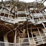 A maior casa da árvore do mundo gastou quase 20 anos para ser construída (Foto: Divulgação)