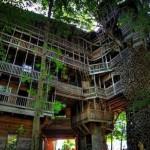 A maior casa da árvore do mundo fica no Tennessee - EUA (Foto: Divulgação)