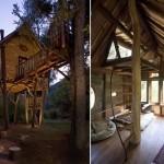 Casa da árvore e o seu interior (Foto: Divulgação)