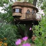Madeira de lei, reflorestada ou reciclada é uma ótima opção para a estrutura da casa (Foto: Divulgação)