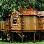 As telhas devem impermeáveis e resistentes (Foto: Divulgação)